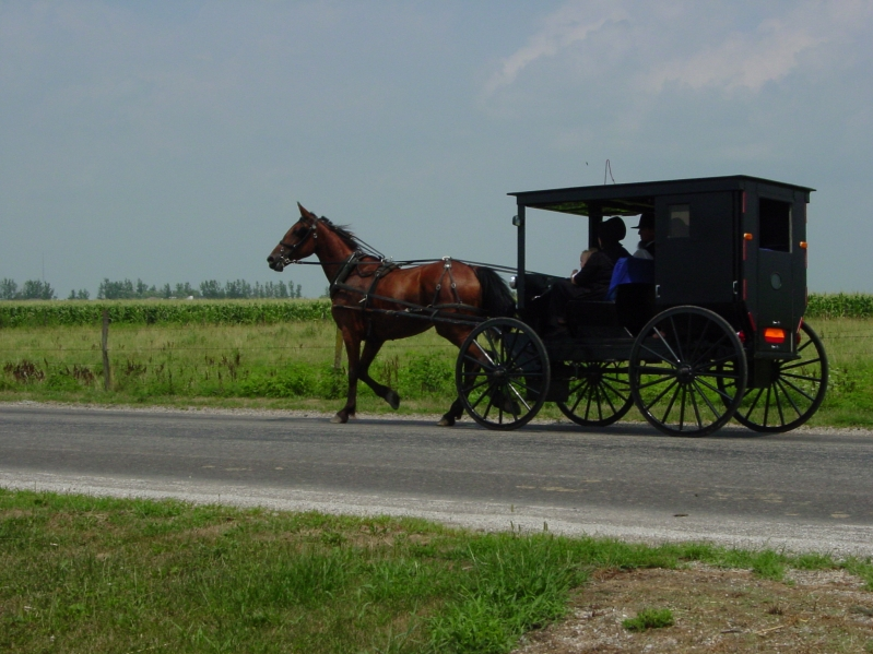 Ohio Amish Country